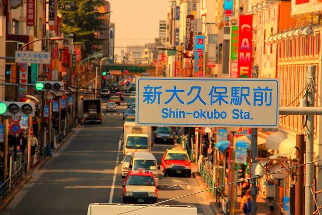 poblacion japonesa