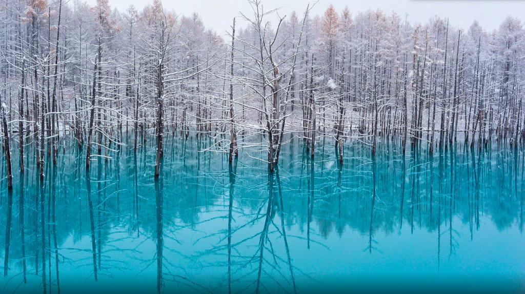 estanque azul