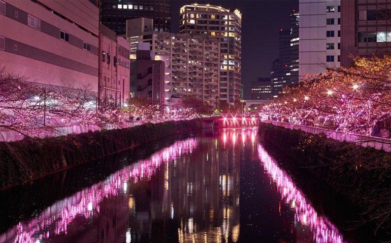 Iluminaciones rio meguro