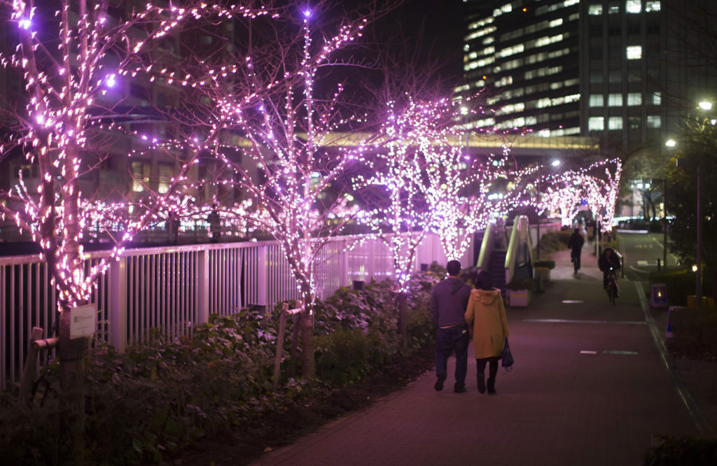 Winter illumination at meguro river