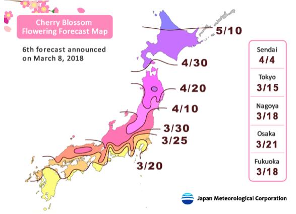 Mapa de la floración de las flores de cerezo