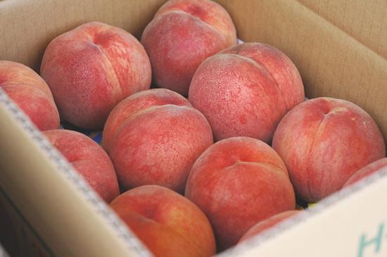 Peach Line