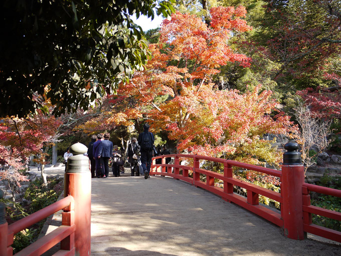 Parque Momijidani