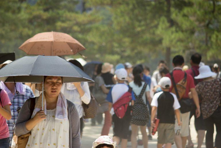 sobrevivir al verano japonés