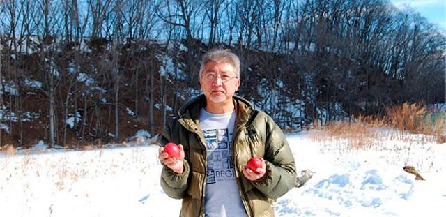 Hokkaido: La isla donde los mangos crecen en la nieve