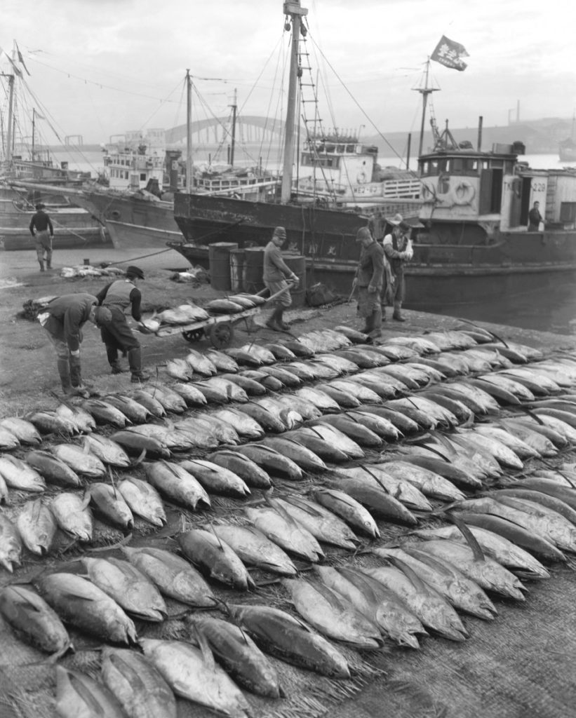 cierra el mercado tsukiji