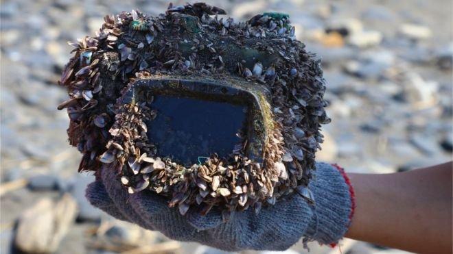cámara mar perdida japón