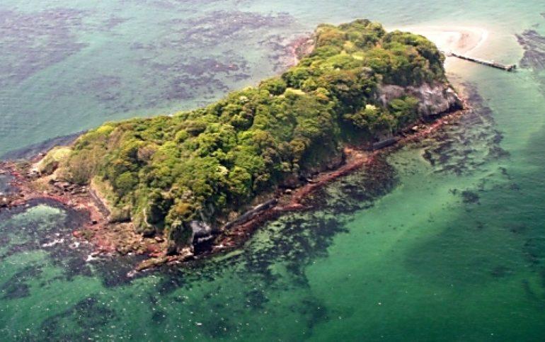 Monkey D. Luffy isla
