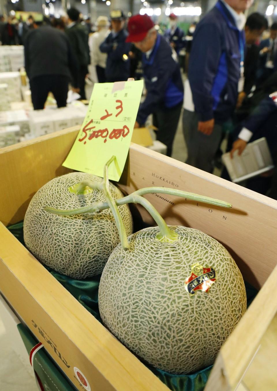 japón melones yubari récord
