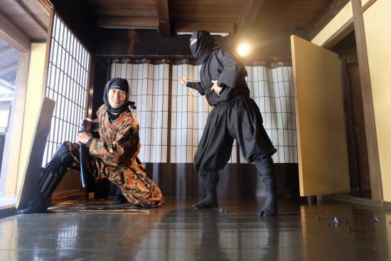 museo ninja robo